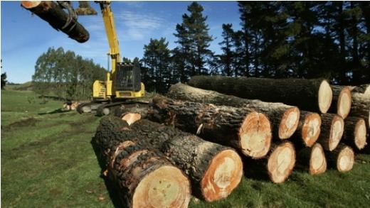log prices image